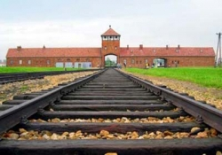 Excursion to Auschwitz - Birkenau