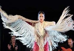 Flamenco Show and Tapas Dinner in Valencia