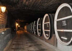Wine tour in Chisinau