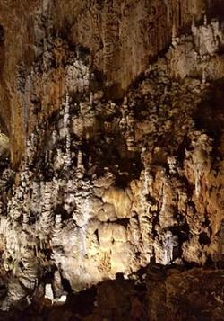 Grado - Grotta Gigante - Trieste
