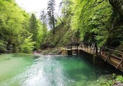 Excursion to Ljubljana