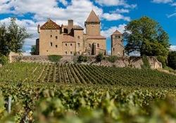 Castle Pierreclos - Dijon