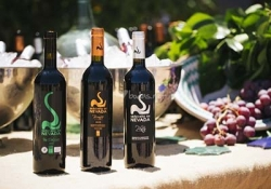 Tour to Winery Seтorío de Nevada with Wine tasting