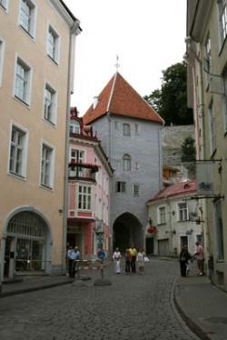 Tallinn City tour