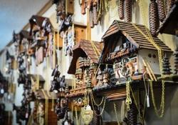 Black Forest Open Air Museum - Triberg - Donaueschingen - Source of the Danube - Freiburg im Breisgau