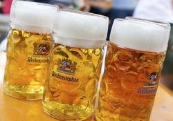 Erding Farmhouse Museum - Brewery Erdinger - Weihenstephaner brewery