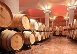 Stobi Wine Tour