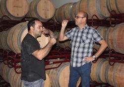Valladolid - Ribera del Duero - Wine tasting